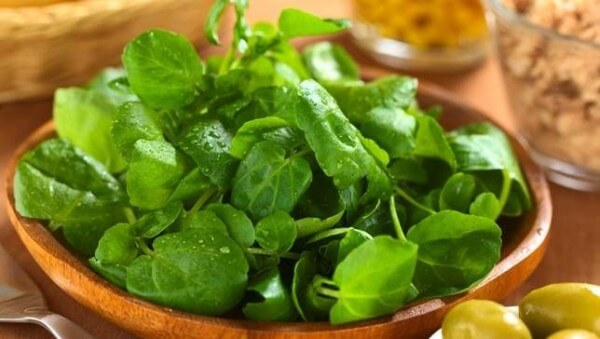 Watercress-600x339
