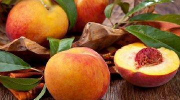 10 Awesome Health Discoveries About Peaches That Can Save Your Life