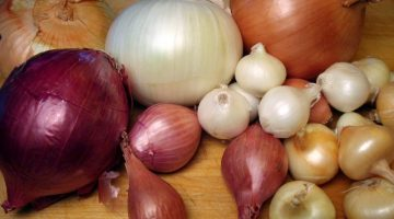 Eat Onions Everyday To Keep Doctors Away