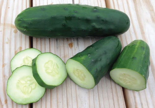 Cucumber-Seed