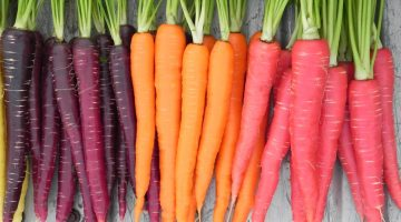 You've Been Lied To: 6 Disturbing Facts About How Eating Carrots Can Wreck Your Health