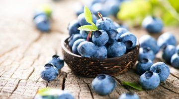 Eating Blueberries Regularly May Be Wonderful For People Suffering From Liver Damage
