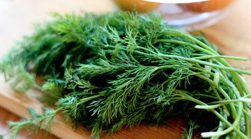Dill Is Great To Help In Fight Against Diabetes