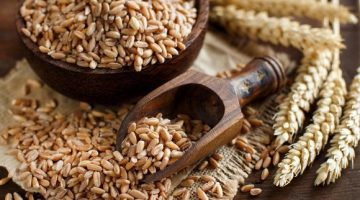 8 Incredible Things About Spelt That Will Amaze You
